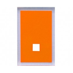 GEDY 2 COUVRE PLAQUE MAINE ORANGE